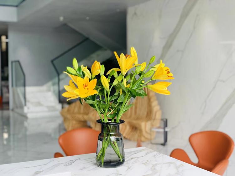 2i calacatta marble countertop